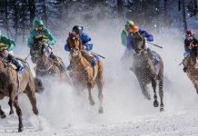 Zakłady bukmacherskie na wyścigi koni. Jak obstawia się gonitwy online?