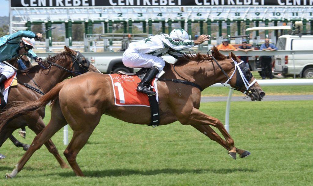 Wyścigi koni Służewiec online